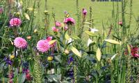 Blumenbeet_JH.jpg